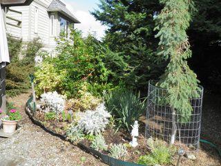 Photo 14: 102A 2250 Manor Pl in COMOX: CV Comox (Town of) Condo for sale (Comox Valley)  : MLS®# 823177