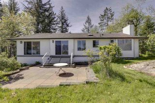 Photo 14: 34951 FERNDALE Avenue in Mission: Hatzic House for sale : MLS®# R2419657