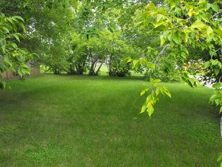 Photo 3: 5114 51 Avenue: Elk Point House for sale : MLS®# E4192311