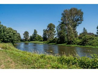 Photo 30: 40160 SOUTH PARALLEL Road in Abbotsford: Sumas Prairie Manufactured Home for sale : MLS®# R2487480