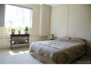 Photo 15: 970 Annie Street in VICTORIA: SE Quadra Strata Duplex Unit for sale (Saanich East)  : MLS®# 309084