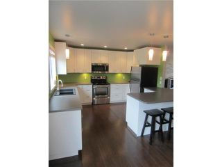 Photo 5: 397 Gerard Drive in STADOLPHE: Glenlea / Ste. Agathe / St. Adolphe / Grande Pointe / Ile des Chenes / Vermette / Niverville Residential for sale (Winnipeg area)  : MLS®# 1215264