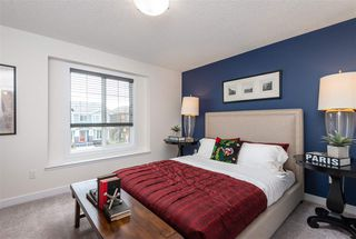 Photo 17: 22112 88 Avenue in Edmonton: Zone 58 House for sale : MLS®# E4179090
