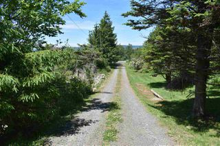 Photo 8: 8836 Highway 101 in Brighton: 401-Digby County Residential for sale (Annapolis Valley)  : MLS®# 202012208