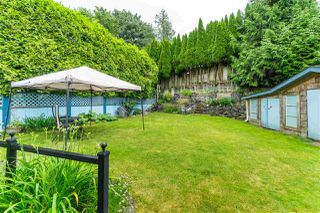 Photo 35: 3124 BABICH Street in Abbotsford: Central Abbotsford House for sale : MLS®# R2480951