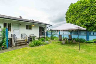 Photo 38: 3124 BABICH Street in Abbotsford: Central Abbotsford House for sale : MLS®# R2480951