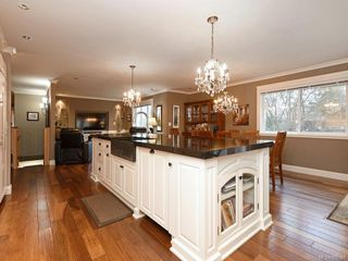 Photo 3: 1279 Geric Pl in : SW Strawberry Vale Single Family Detached for sale (Saanich West)  : MLS®# 850780