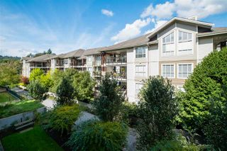 """Photo 24: 308 2473 ATKINS Avenue in Port Coquitlam: Central Pt Coquitlam Condo for sale in """"VALORE ON THE PARK"""" : MLS®# R2501965"""