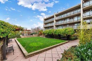 Photo 24: 212 1419 Stadacona Ave in : Vi Fernwood Condo for sale (Victoria)  : MLS®# 860894