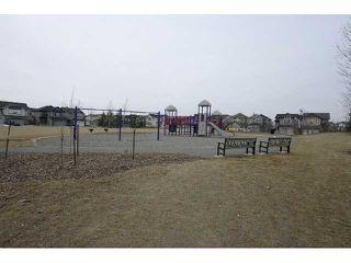 Photo 19: 133 BRIGHTONSTONE Gardens SE in CALGARY: New Brighton Residential Detached Single Family for sale (Calgary)  : MLS®# C3514464
