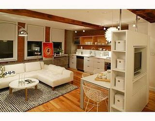Photo 2: 003 528 BEATTY Street in Vancouver West: Downtown VW Home for sale ()  : MLS®# V647653