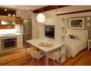 Photo 3: 003 528 BEATTY Street in Vancouver West: Downtown VW Home for sale ()  : MLS®# V647653