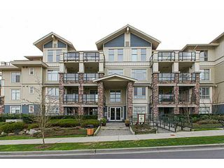 Photo 17: # 205 290 FRANCIS WY in New Westminster: Fraserview NW Condo for sale : MLS®# V1111682
