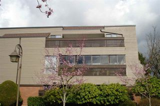 Photo 3: 308 444 W 49TH AVENUE in Vancouver: South Cambie Condo for sale (Vancouver West)  : MLS®# R2040340