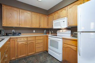 Photo 11: 312 11595 FRASER STREET in Maple Ridge: East Central Condo for sale : MLS®# R2050704