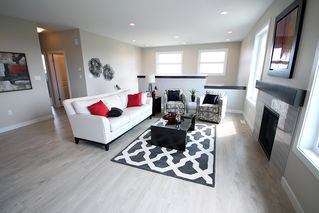 Photo 10: 28 Bartman Drive in St Adolphe: Tourond Creek Residential for sale (R07)  : MLS®# 1929969