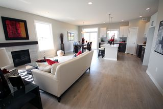 Photo 8: 28 Bartman Drive in St Adolphe: Tourond Creek Residential for sale (R07)  : MLS®# 1929969