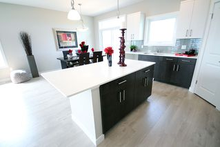 Photo 5: 28 Bartman Drive in St Adolphe: Tourond Creek Residential for sale (R07)  : MLS®# 1929969
