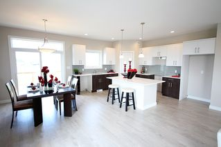 Photo 7: 28 Bartman Drive in St Adolphe: Tourond Creek Residential for sale (R07)  : MLS®# 1929969