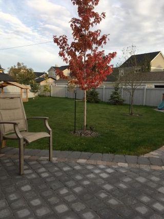 Photo 50: 1519 KINROSS Road in Edmonton: Zone 27 House for sale : MLS®# E4186669