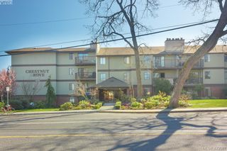 Main Photo: 106 1655 Begbie Street in VICTORIA: Vi Fernwood Condo Apartment for sale (Victoria)  : MLS®# 423581
