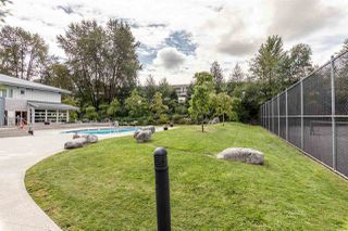 "Photo 33: 217 801 KLAHANIE Drive in Port Moody: Port Moody Centre Condo for sale in ""Inglenook"" : MLS®# R2494283"