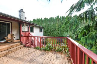 Photo 45: 4613 Gail Cres in : CV Courtenay North House for sale (Comox Valley)  : MLS®# 858225