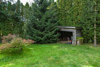 Photo 42: 4613 Gail Cres in : CV Courtenay North House for sale (Comox Valley)  : MLS®# 858225