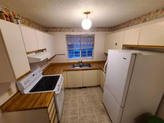 Photo 13: 126 Martindale Boulevard NE in Calgary: Martindale Detached for sale : MLS®# A1041134