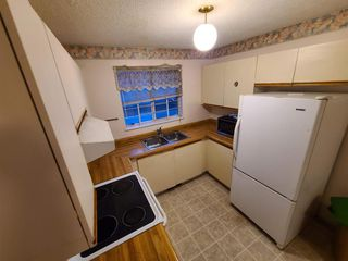 Photo 6: 126 Martindale Boulevard NE in Calgary: Martindale Detached for sale : MLS®# A1041134