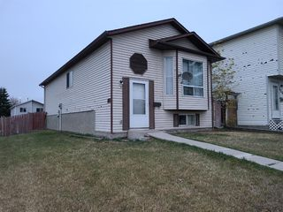 Photo 1: 126 Martindale Boulevard NE in Calgary: Martindale Detached for sale : MLS®# A1041134