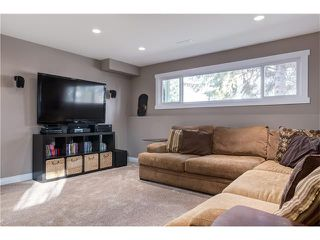 Photo 21: 1493 LAKE MICHIGAN CR SE in Calgary: Bonavista Downs House for sale : MLS®# C4054541