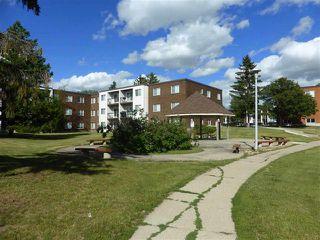 Photo 19: #102 11465 41 AV NW NW in Edmonton: Condo for sale : MLS®# E4141026