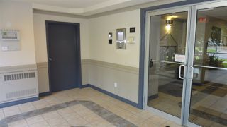 Photo 5: 303 11207 116 Street in Edmonton: Zone 08 Condo for sale : MLS®# E4166460
