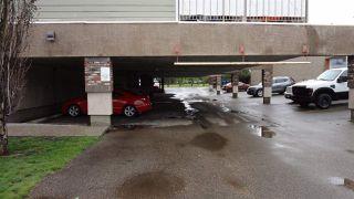 Photo 29: 303 11207 116 Street in Edmonton: Zone 08 Condo for sale : MLS®# E4166460