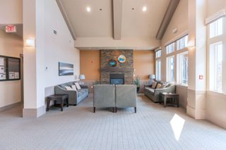 "Photo 14: 46 10489 DELSOM Crescent in Delta: Nordel Townhouse for sale in ""ECLIPSE AT SUNSTONE"" (N. Delta)  : MLS®# R2410221"