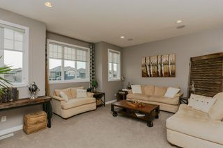 Photo 17: 2248 BLUE JAY LANDING in Edmonton: Zone 59 House for sale : MLS®# E4181607