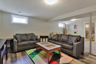 Photo 22: 4913 47 Avenue: Stony Plain House for sale : MLS®# E4198336