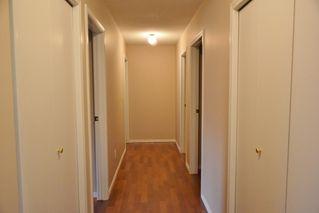 Photo 12: 401 18020 95 Avenue in Edmonton: Zone 20 Condo for sale : MLS®# E4217844