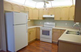 Photo 6: 401 18020 95 Avenue in Edmonton: Zone 20 Condo for sale : MLS®# E4217844