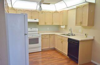 Photo 7: 401 18020 95 Avenue in Edmonton: Zone 20 Condo for sale : MLS®# E4217844