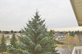 Photo 28: 401 18020 95 Avenue in Edmonton: Zone 20 Condo for sale : MLS®# E4217844