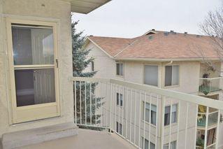 Photo 25: 401 18020 95 Avenue in Edmonton: Zone 20 Condo for sale : MLS®# E4217844