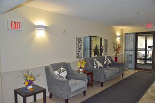 Photo 4: 401 18020 95 Avenue in Edmonton: Zone 20 Condo for sale : MLS®# E4217844