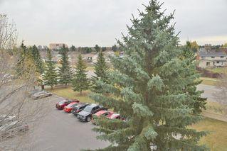 Photo 29: 401 18020 95 Avenue in Edmonton: Zone 20 Condo for sale : MLS®# E4217844