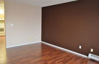 Photo 11: 401 18020 95 Avenue in Edmonton: Zone 20 Condo for sale : MLS®# E4217844