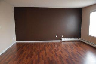 Photo 10: 401 18020 95 Avenue in Edmonton: Zone 20 Condo for sale : MLS®# E4217844
