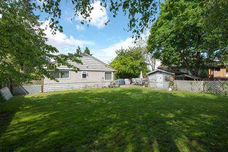 Photo 10: 10100 HELEN Drive in Surrey: Cedar Hills House for sale (North Surrey)  : MLS®# F1311668