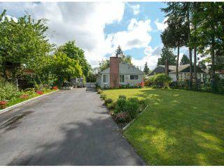 Photo 11: 10100 HELEN Drive in Surrey: Cedar Hills House for sale (North Surrey)  : MLS®# F1311668
