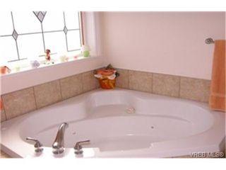 Photo 3: 4212 Oakview Pl in VICTORIA: SE Lambrick Park House for sale (Saanich East)  : MLS®# 348217